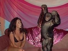 Monkey fucks teen girl