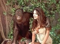 Girl Fucked By Ape