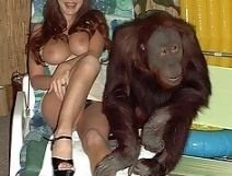 Fucks monkey girl monkey sex